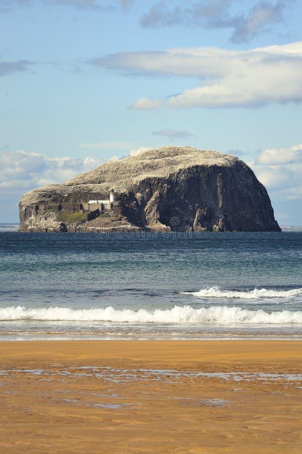 Baß-Felsen und Strand, Schottland stockfotografie
