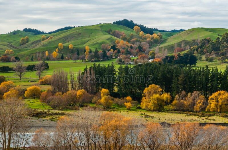 A baía de Hawke no outono Em algum lugar em Nova Zelândia fotografia de stock