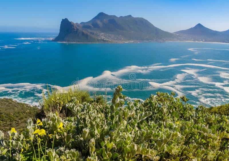 Baía de Hout da movimentação máxima de Chapman, África do Sul imagens de stock royalty free