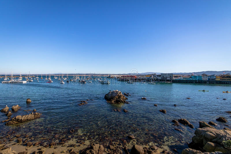 Baía de Monterey no bosque pacífico - Monterey, Califórnia, EUA imagens de stock