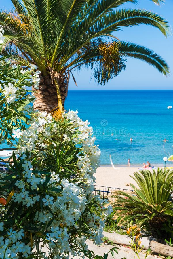 Baía de Paleokastritsa na ilha de Corfu, arquipélago Ionian, Grécia fotografia de stock