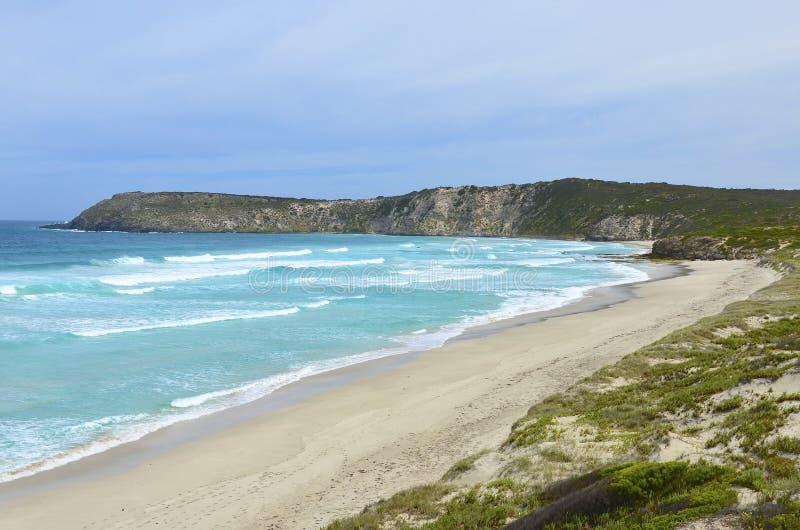Baía de Pennington, ilha do canguru fotos de stock royalty free
