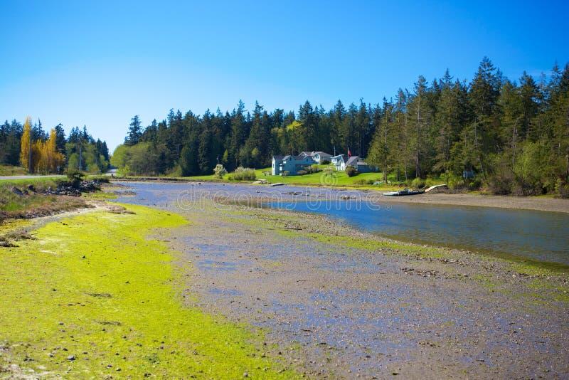 Baía do mistério, ilha de Marrowstone Península olímpica Estado de Washington fotos de stock