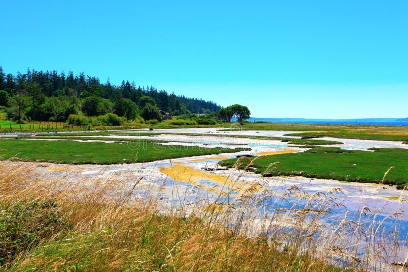 Baía do mistério, ilha de Marrowstone Península olímpica Estado de Washington imagem de stock royalty free