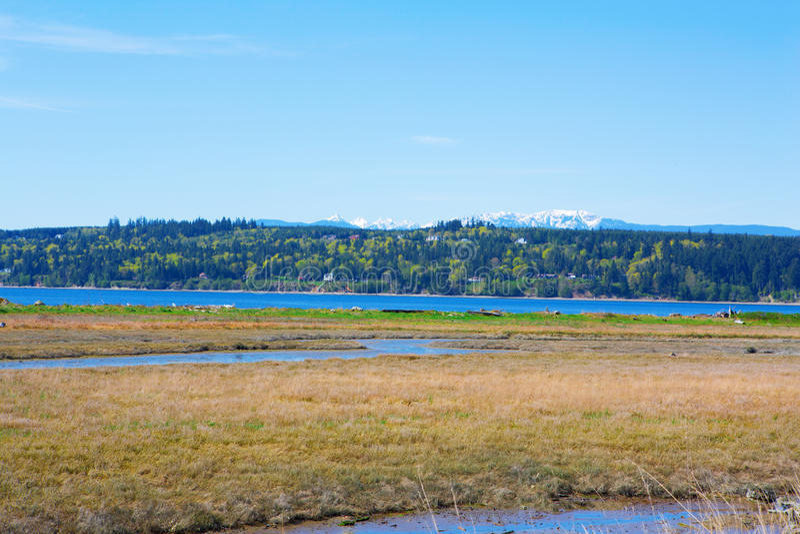 Baía do mistério, ilha de Marrowstone Península olímpica Estado de Washington imagens de stock royalty free