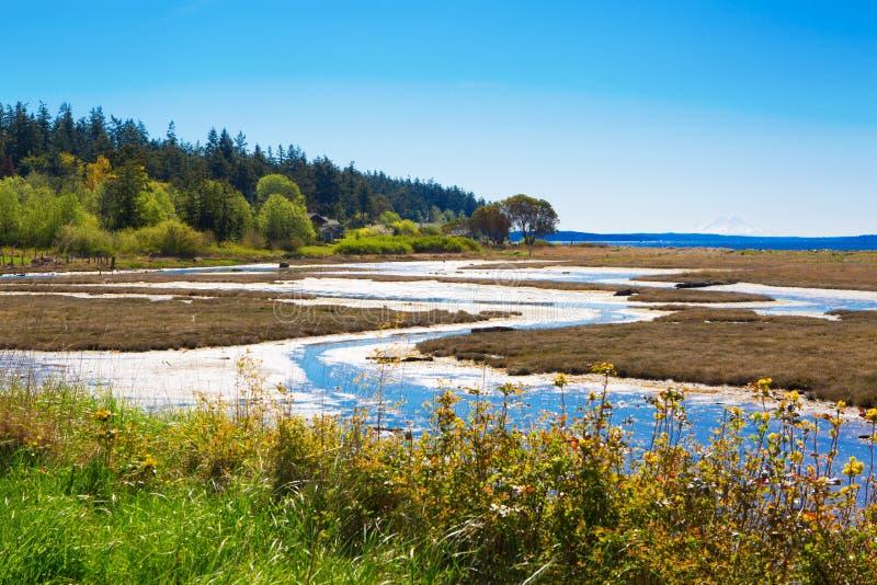 Baía do mistério, ilha de Marrowstone Península olímpica Estado de Washington fotografia de stock
