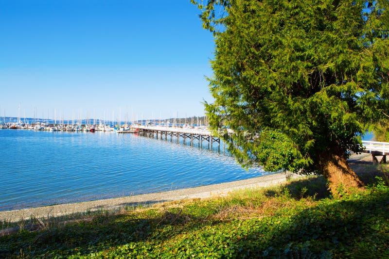 Baía do mistério, ilha de Marrowstone Península olímpica Estado de Washington foto de stock