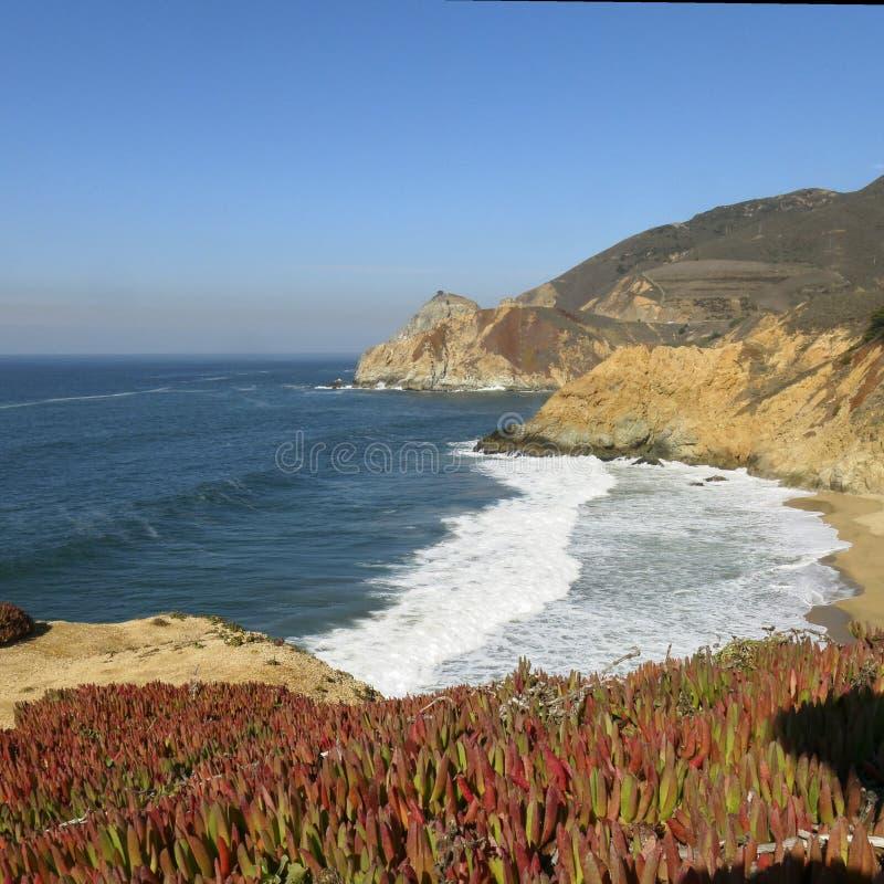 Baía do oceano em Califórnia fotos de stock royalty free