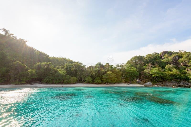 Baía e praia da lua de mel na ilha de Similan, Tailândia imagens de stock