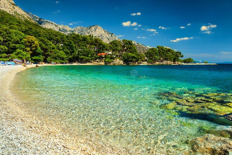 Baía e praia espetaculares, Brela, região de Dalmácia, Croácia, Europa fotografia de stock royalty free