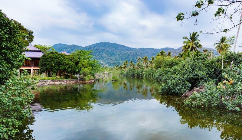 Download Baía em uma ilha tropical foto de stock. Imagem de lagoa - 65576082
