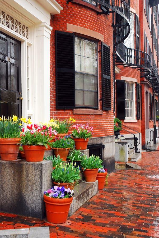 Baía traseira Boston na mola foto de stock royalty free