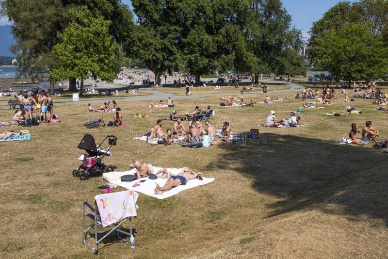 Bañistas de Sun en la hierba en la playa de Kitsilano o la 'playa de los equipos en Vancouver imagen de archivo libre de regalías