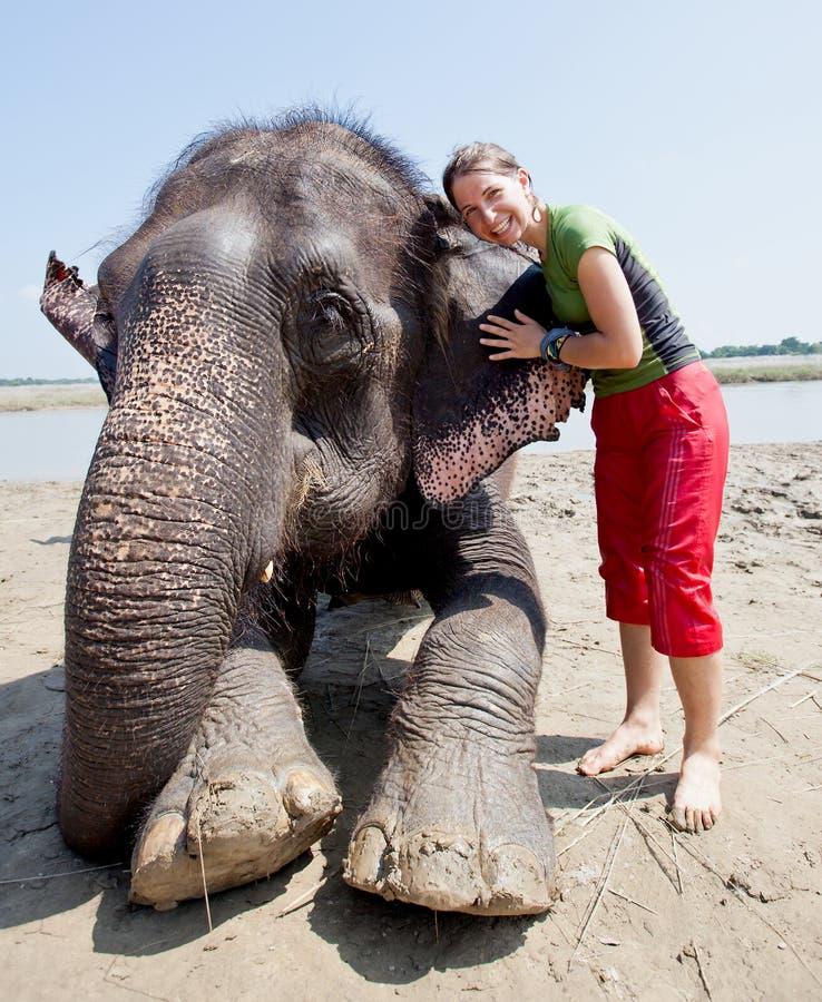 Baño con el elefante imagen de archivo