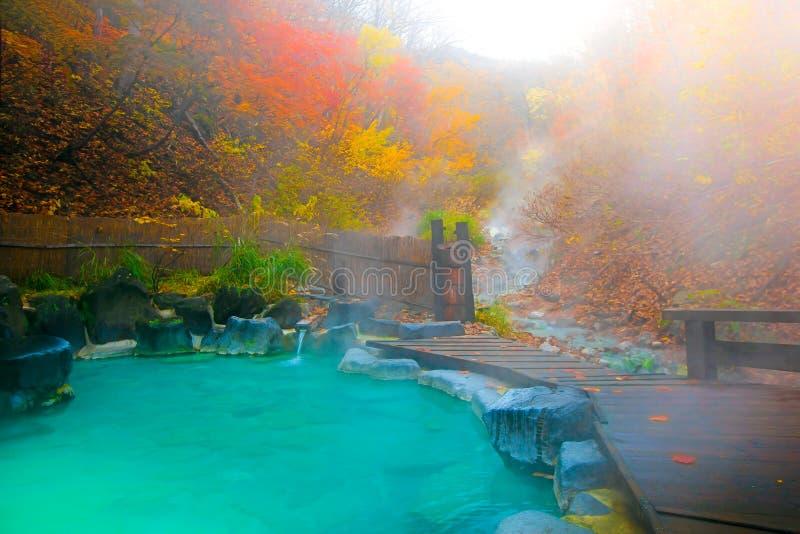 Baño natural de Onsen de las aguas termales japonesas rodeado por las hojas rojo-amarillas En caída las hojas caen en Japón fotografía de archivo