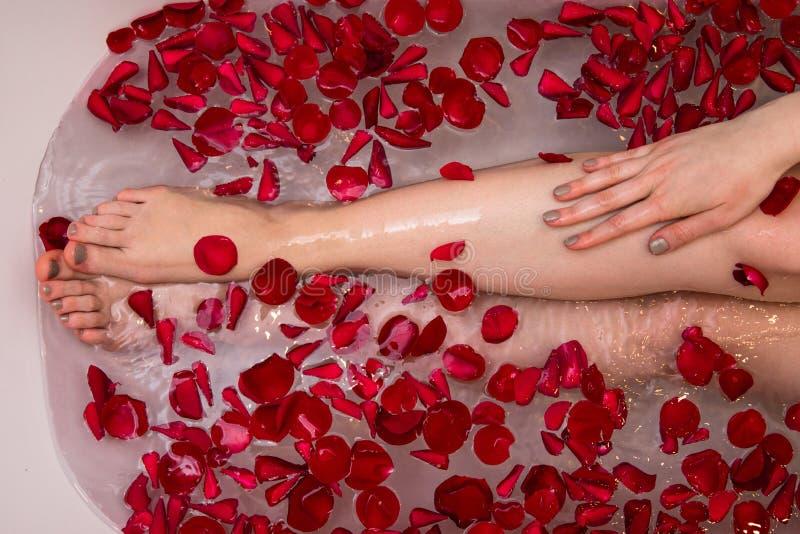 Baño romántico con los petails color de rosa, mujer de día de San Valentín en el balneario casero, cuidado de lujo del uno mismo imágenes de archivo libres de regalías