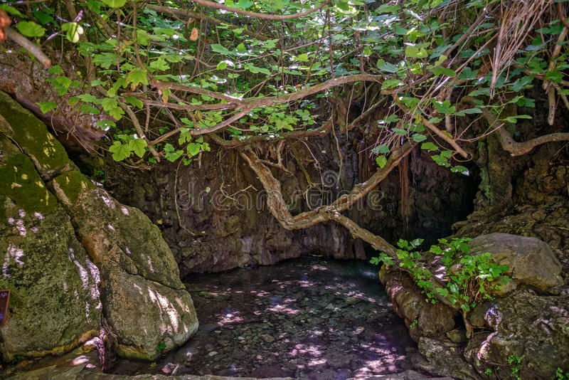 Baños del Aphrodite en Chipre foto de archivo libre de regalías