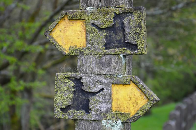 Bałamutni kierunków znaki na czarownica śladzie fotografia royalty free