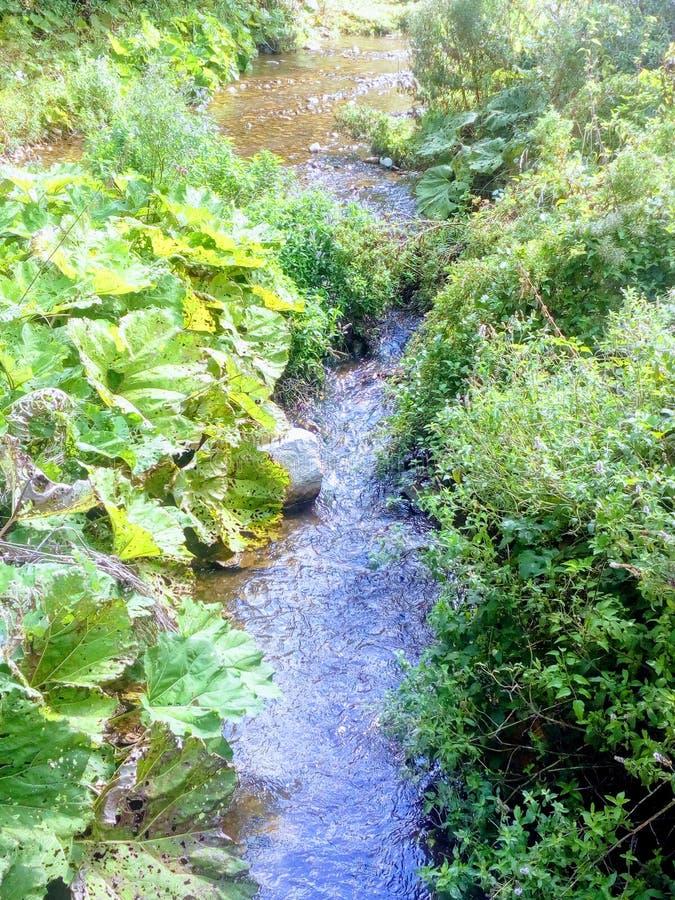 Bałkańska rzeka zdjęcia stock