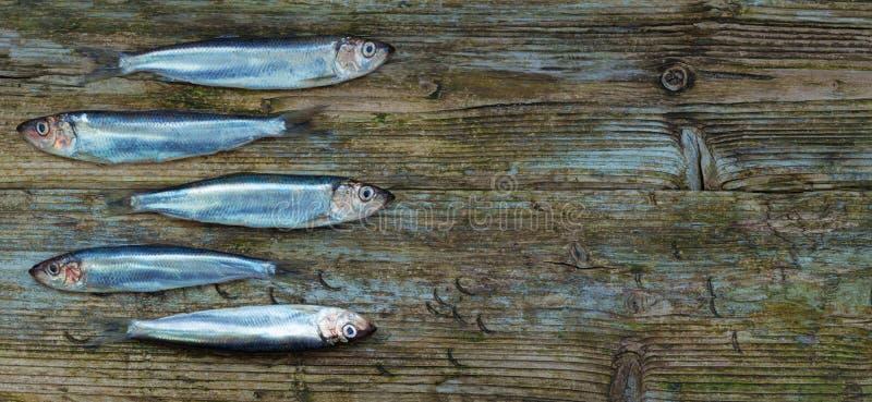 Bałtycki śledziowy drewniany stół starzejący się brzdąc tło zdjęcia stock