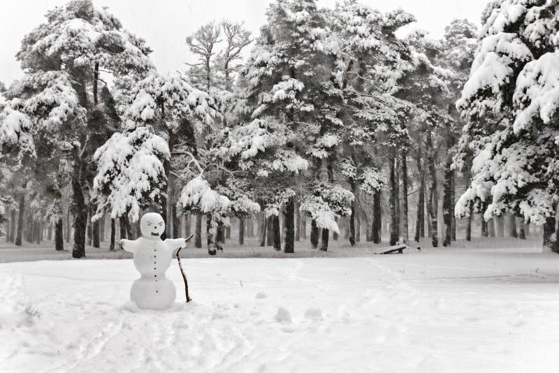 Bałwan w opad śniegu obraz royalty free