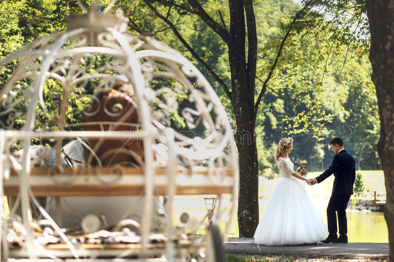 Baśniowy Cinderella ślubu pary ślubny kareciany magiczny br obraz royalty free
