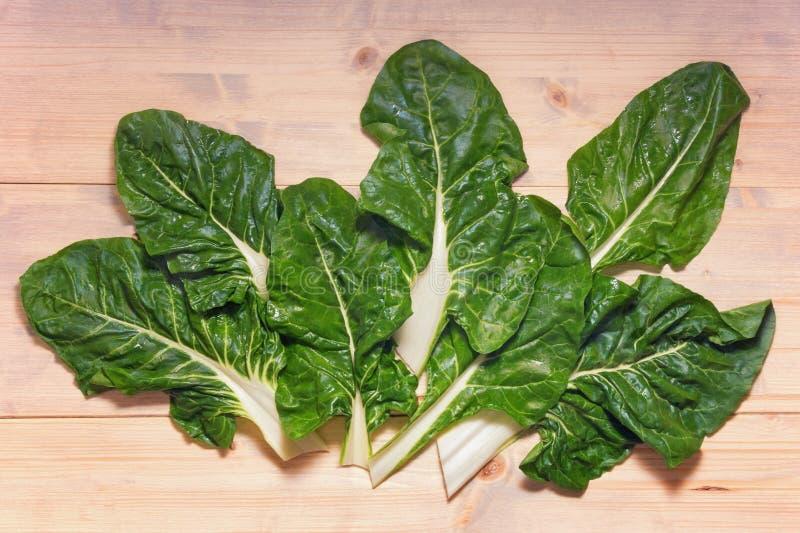 Ba?ka?ska kuchnia Blitva chard liście - popularni obfitolistni warzywa Bia?y nieociosany t?o, mieszkanie nieatutowy obrazy royalty free