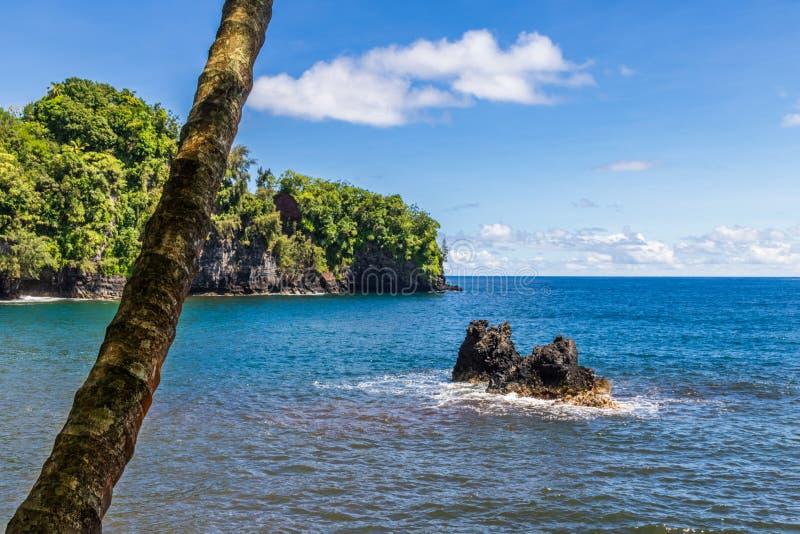 Baai op Groot Eiland, Hawaï Blauwe overzees met rots; palm in voorgrond Kustlijn en blauwe hemel op achtergrond royalty-vrije stock afbeeldingen