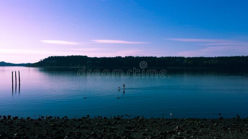 Baai in Tacoma bij zonsondergang stock afbeeldingen