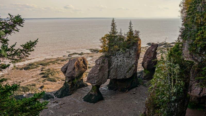 Baai van Fundy in Oost-Canada stock afbeelding