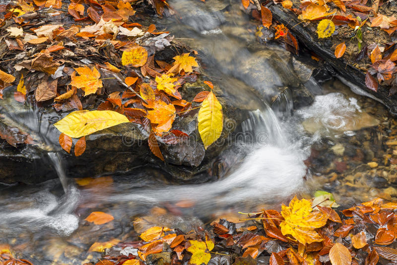 Babbling Autumn Brook. Water courses around a rocky stream bed blanketed in colorful fallen autumn leaves royalty free stock photography