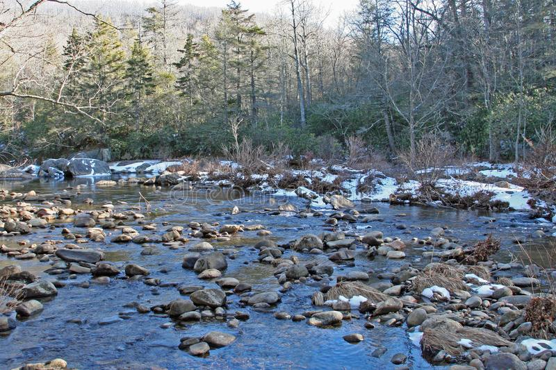 Babbling brook in Asheville North Carolina. Forest in background stock image