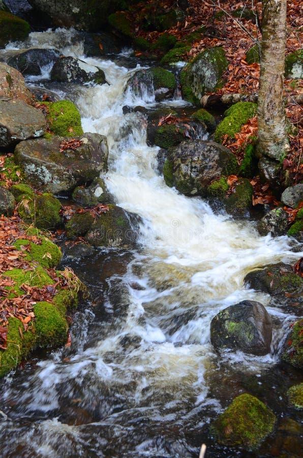 Free Babbling Brook Waterfall Royalty Free Stock Photography - 47667667