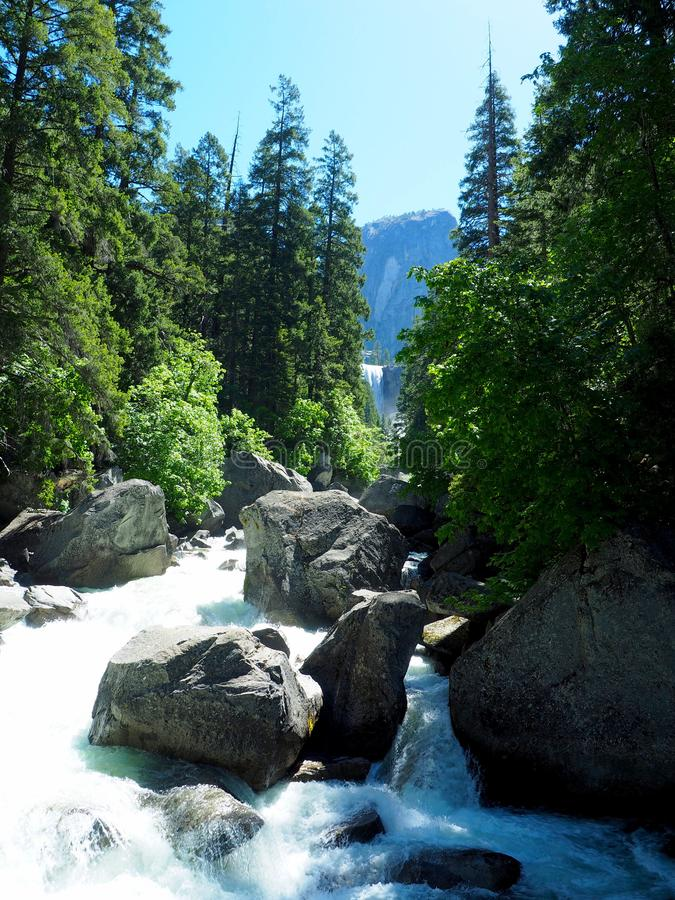 Babbling Brook in Yosemite National Park royalty free stock photos