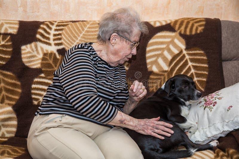 Babcia na leżance z psem fotografia royalty free