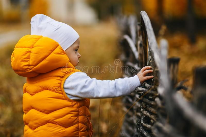 babe in een geel vest in de herfst in openlucht royalty-vrije stock afbeelding