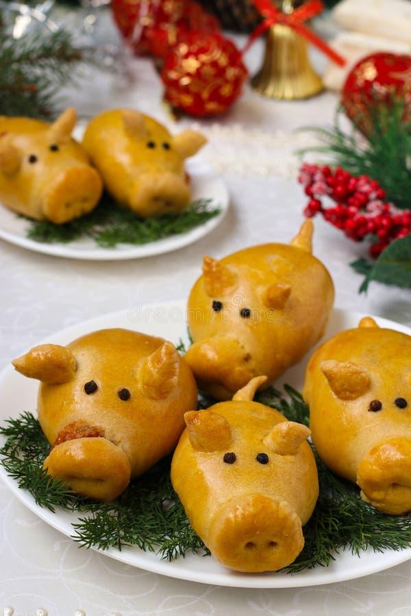 Babeczek świnie dla nowego roku 2019 wypiekowy domowej roboty obraz royalty free