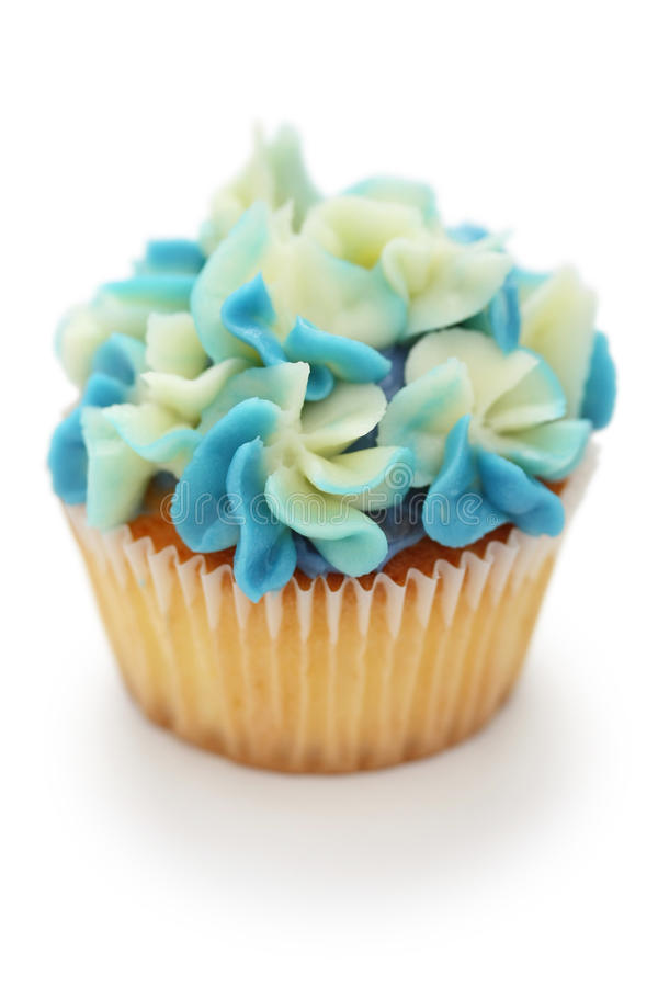 babeczki błękitny hortensia obraz stock