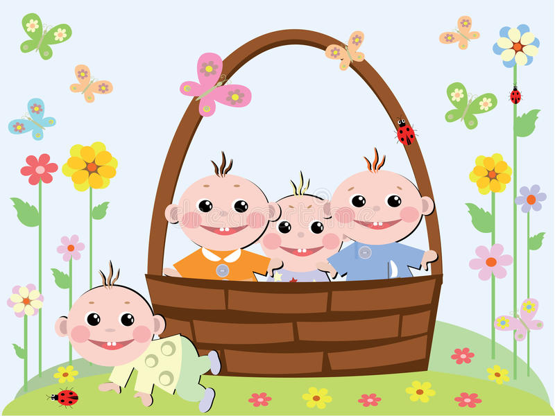 Babies in the basket
