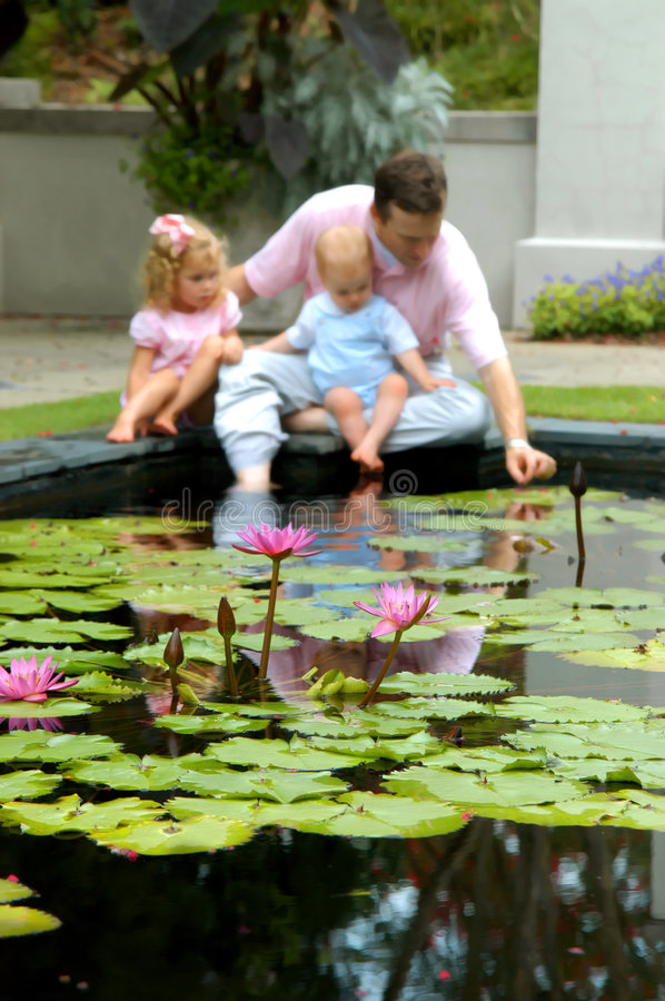 Babies explore Water Lilies royalty free stock images