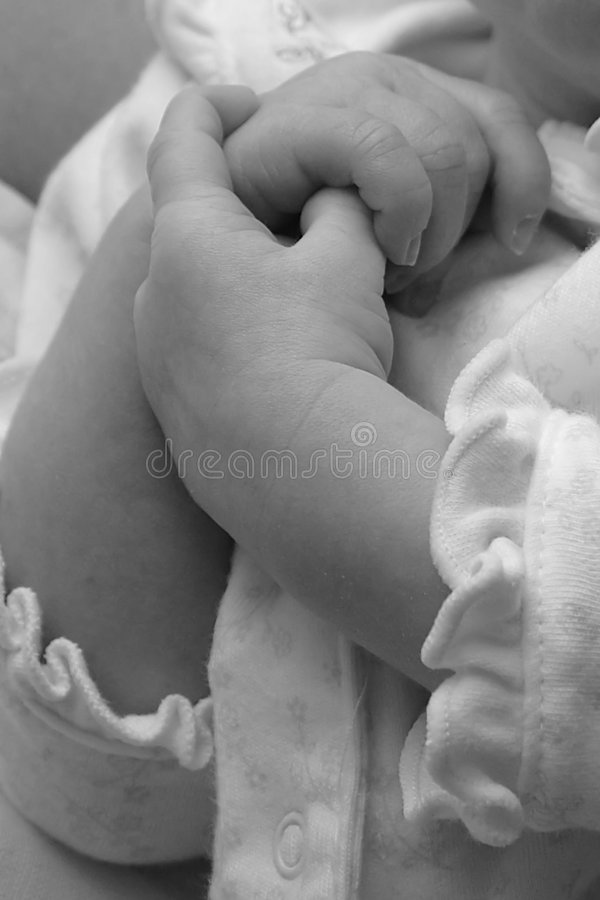 Babies hands royalty free stock photo