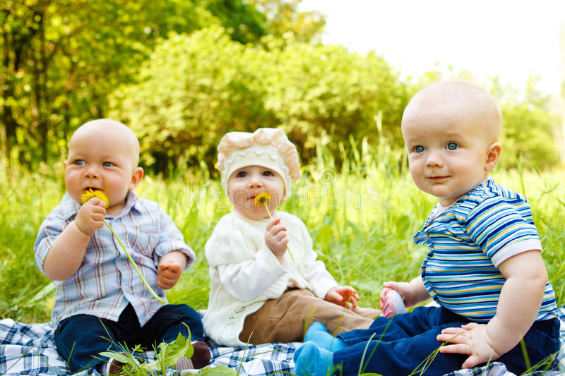 Download Babies in park stock image. Image of brother, children - 14511237
