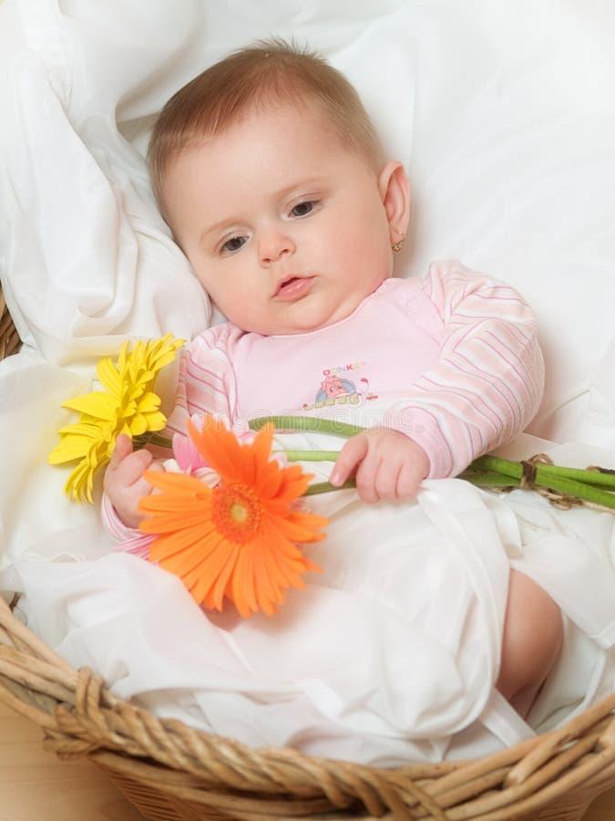 Babies Portrait lizenzfreie stockfotografie