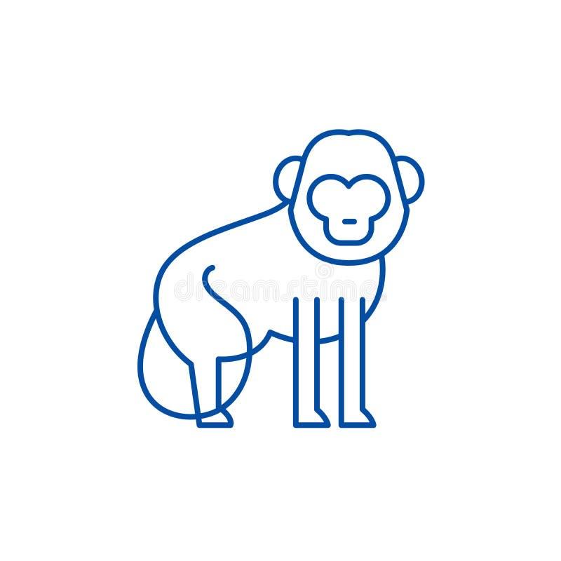 Baboon έννοια εικονιδίων γραμμών Baboon επίπεδο διανυσματικό σύμβολο, σημάδι, απεικόνιση περιλήψεων απεικόνιση αποθεμάτων