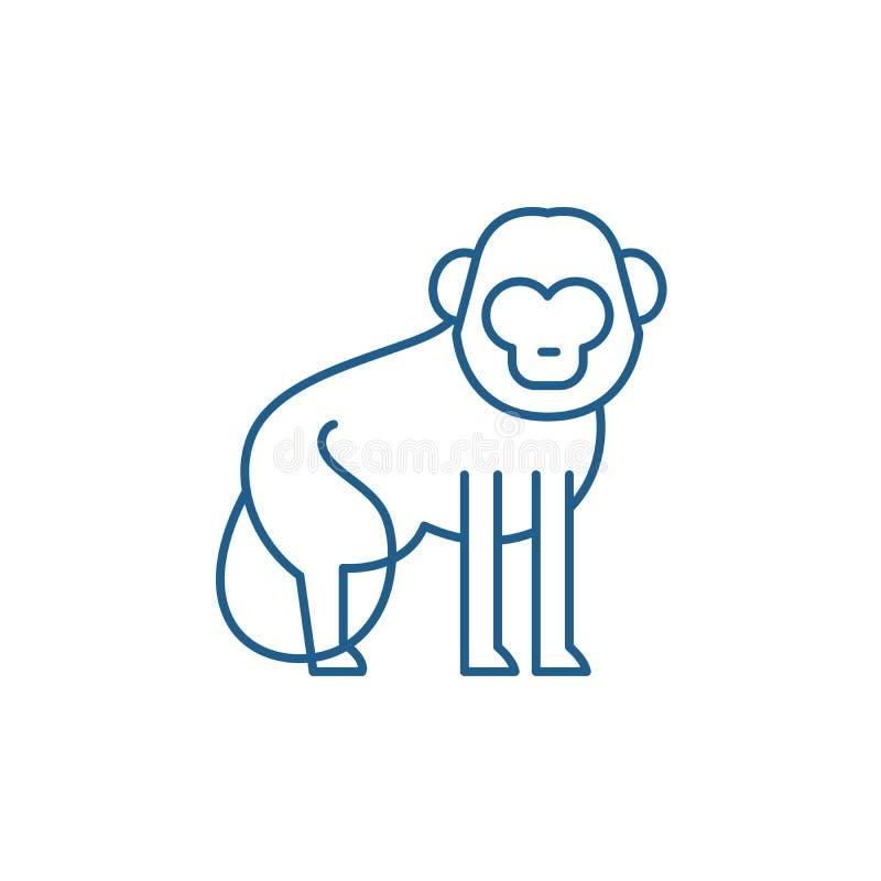 Baboon έννοια εικονιδίων γραμμών Baboon επίπεδο διανυσματικό σύμβολο, σημάδι, απεικόνιση περιλήψεων διανυσματική απεικόνιση