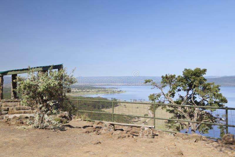 Baboon επιφυλακή απότομων βράχων, Κένυα στοκ φωτογραφία