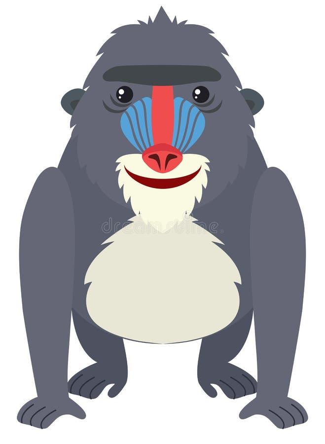 Baboon με το ευτυχές πρόσωπο ελεύθερη απεικόνιση δικαιώματος