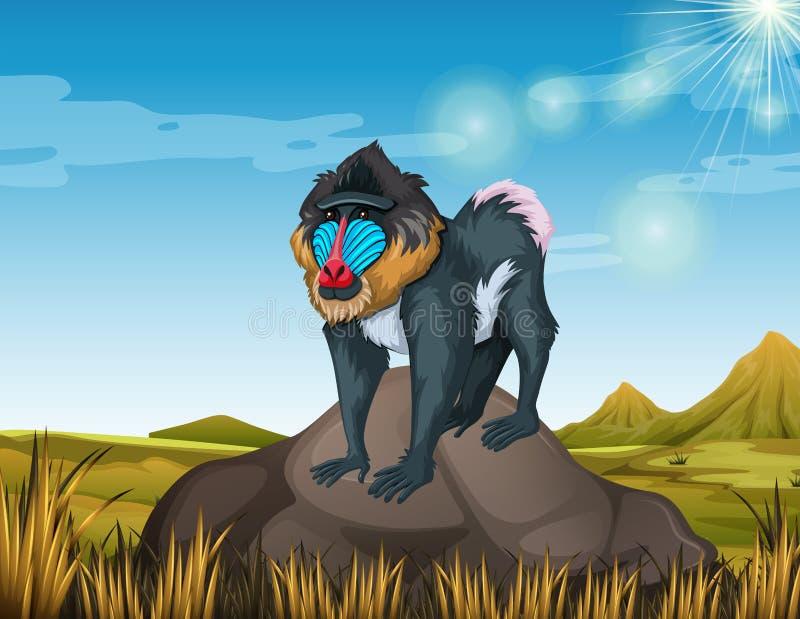 Baboon που στέκεται στο βράχο ελεύθερη απεικόνιση δικαιώματος