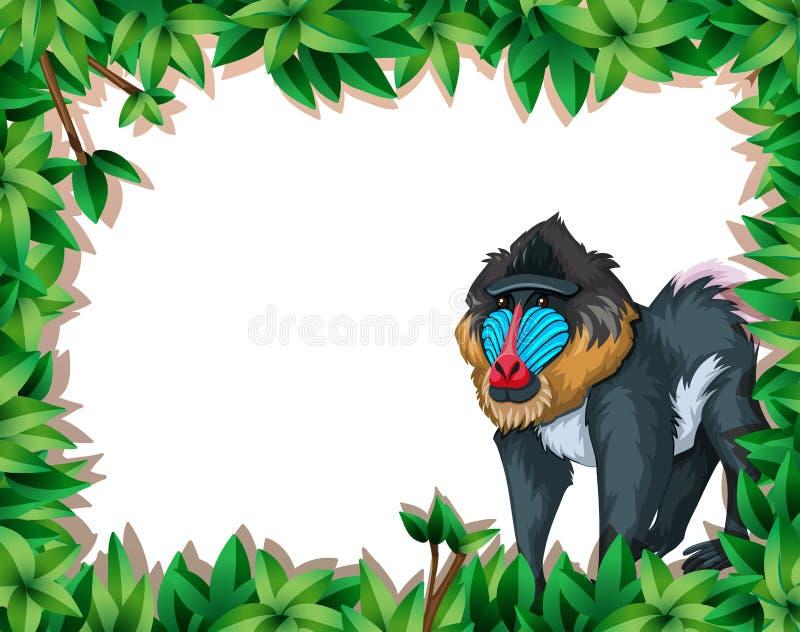 Baboon mandrill στο πλαίσιο φύσης ελεύθερη απεικόνιση δικαιώματος