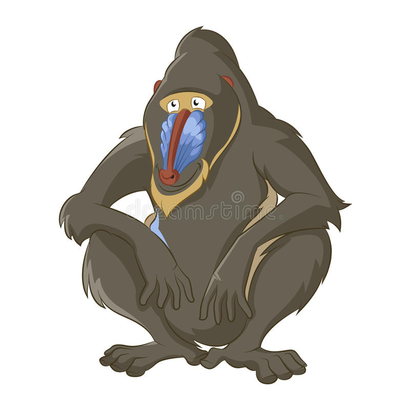 Baboon. Vector image of funny cartoon wisdom baboon stock illustration